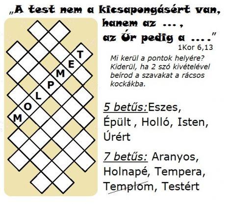 1_koe_613_testert.jpg