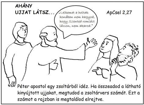 apcsel_227.jpg