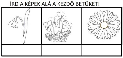 kezdobetus_viragok.jpg