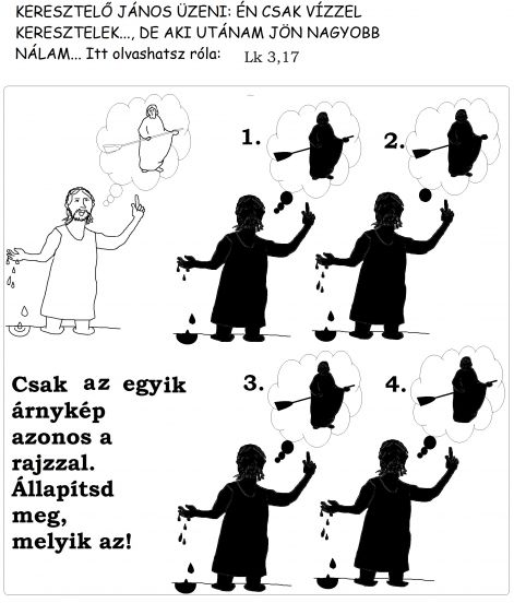 lk_317_arnykep.jpg